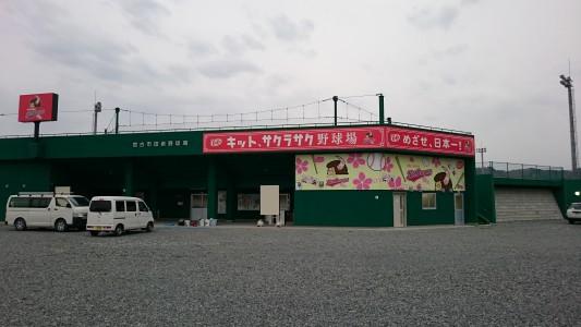 施工後の「キット、サクラサク野球場」